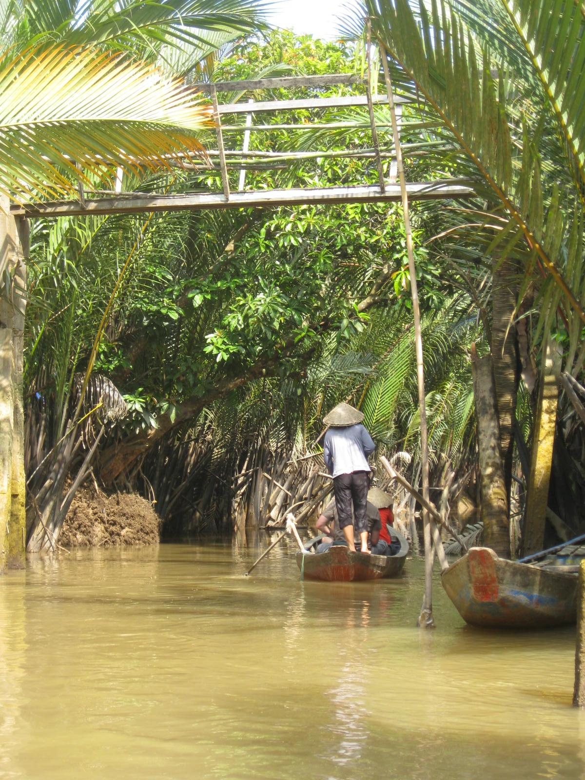 Gondola Ride Through Jungle In Mekong Delta