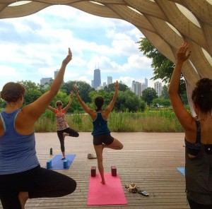 Yoga Class At Lincoln Park Zoo