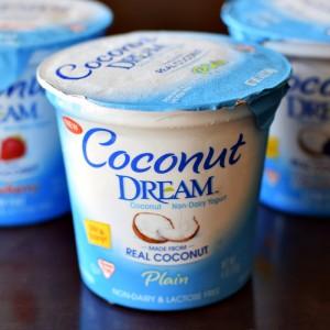 Coconut Dream Yogurt Photo Credit: GoDairyFree.com