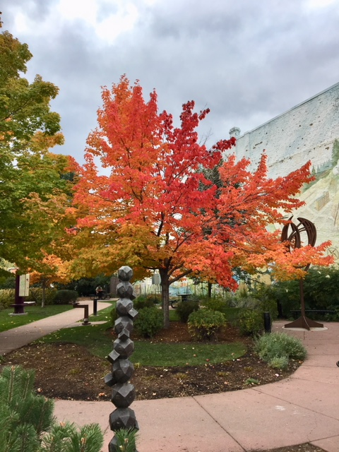 Fall Has Arrived In Bozeman