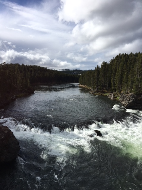 Stunning Views Of Yellowstone River