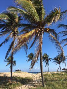 Beautiful Beaches of Playas del Este