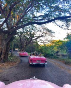 Sunset Drive Through Bosque de Almendares