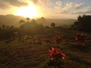 Sunrise Hike Views